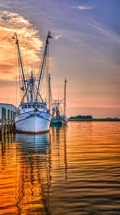 I feel like a worked boat that wants to just stay dock-(Shrimpin fotografia Barcos II) Fishing Boats, Fly Fishing, Fishing Guide, Sports Nautiques, Shrimp Boat, Boat Art, Love Boat, Boat Painting, Boat Dock
