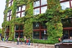 Living Wall at the Musée du Quai Branly in Paris, created by Patrick Blanc, Gilles Clément, and Ateliers Jean Nouvel.