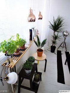 Plants, Decor Ideas, Home, Ad Home, Plant, Homes, Haus, Planets, Houses