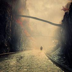 Awesome photo works by Caras Ionut ‹ FREEYORK