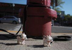lion dog panda nanoblock lego street team detroit ambient marketing street 1