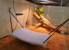 Make a hammock for your bearded dragon! Cut a rectangle from a piece of a cereal box that is the desired size for the hammock and poke a hole near each corner. Bearded Dragon Funny, Bearded Dragon Cage, Bearded Dragon Enclosure, Reptile Habitat, How To Train Dragon, Diy Pillows, Diy Stuffed Animals, Best Diets, Fabric Decor