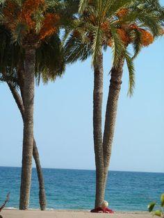 playa de Villajoyosa (Alicante)