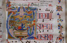 Maestro delle Effigi Domenicane - Morte e Assunzione della Vergine (cod. VI) - Museo del Tesoro di Santa Maria all'Impruneta