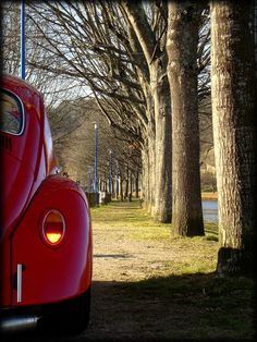 Always wanted a Red VW Bug, not very practical but still... WANT lol. Maybe if I win the lottery