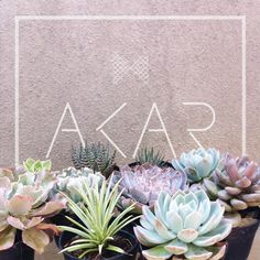 Email : atelierakar@gmail.com Instagram : @akartelier  #furniture #furnish #goodvibe #green #home #decor #succulent #cactus #cacti #homedecor #minimalist #branding #design #product #interior