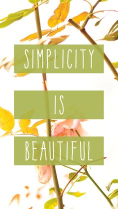 Simplicity is beautiful. #FindYourYes #Kohls #quote