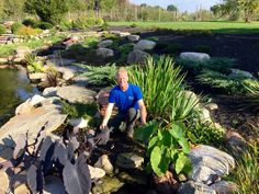 Time to cut these beautiful aquatic plants back and prepare the pond for winter in Rochester NY