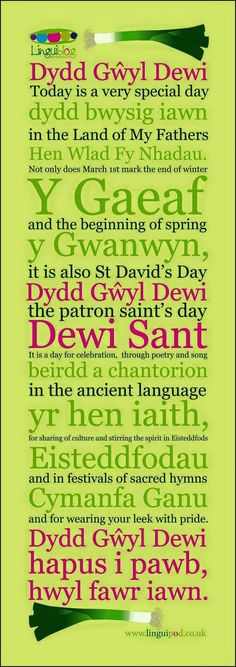 Welsh and proud! Celebrating St David's Day, the Welsh national day - March. Welsh Words, Welsh Phrases, Welsh Sayings, Wales Uk, North Wales, Wales Language, Learn Welsh, Saint David's Day, Scottish Gaelic