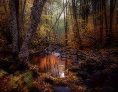 Waketickeh Creek