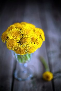dandelions ~ who didn't take their Mom a bouquet of these and feel special about it?