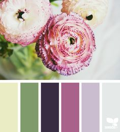 Color Flora - https://www.design-seeds.com/in-nature/flora/color-flora-15