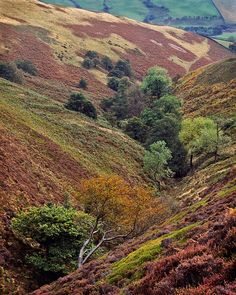 Magnificent patchwork of autumn colors - Edale, Peak District, Derbyshire, England. I have walked these hills with my mother many years ago. Little Britain, Great Britain, Country Living Uk, Peak District, Autumn Scenes, English Countryside, Derbyshire, British Isles, Amazing Nature