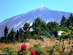 Beautiful Mount Teide Tenerife