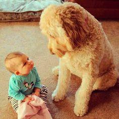 Foto de bebê 8
