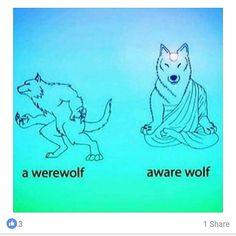 #Repost @punksonweed  T.V. broken  third eye open. :3 #cats #wolves #graffiti #memes #enlightenment #meditation #balance #love #lightworkers #peace #abundance #centered #pow #Wolfgang #meditationmeme