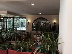 Part of the buffet where we eat regularly. This picture shows the area near the entrance and the smoothie bar.