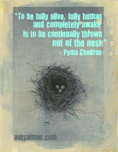 "To be fully alive, fully human, and completely awake is to be continually thrown out of the nest."" ~ Pema Chodron"