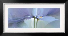 Iris XX Print by Huntington Witherill at Art.com