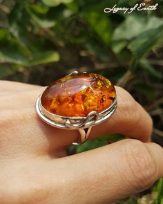 At I have beautiful baltic ring for you Amber Gemstone, Amber Ring, Baltic Amber, Fossils, Druzy Ring, Beautiful Rings, Jewerly, Silver Rings, Pendants