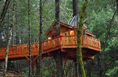 ed & Breakfast Treehouse, Cave Junction, Oregon, USA