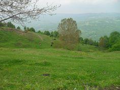 http://ayancuk.com/koy-5960-Kocakonak-Koyu-Inegol-Bursa.html  Kocakonak Köyü; Bursa ilinin İnegöl ilçesine bağlı bir köydür.