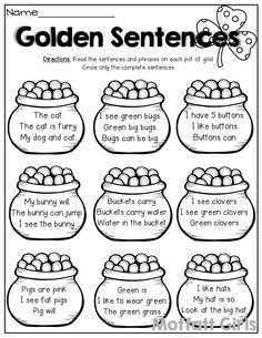 Types of Sentences- Can you identify a statement, command