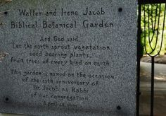 Where Can I Find Bible Plants in Pittsburgh?