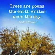 "Trees are <b>poems</b> that the earth writes upon the <b>sky</b>."" - Kahlil Gibran ..."