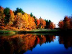 Fall colors reflecting