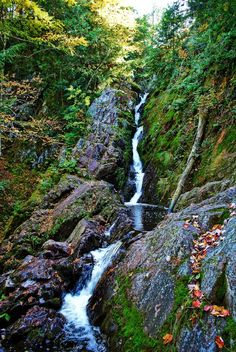 Northern WI Waterfall #Roadtrip