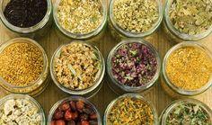 10 Healing Herbs Used in Teas