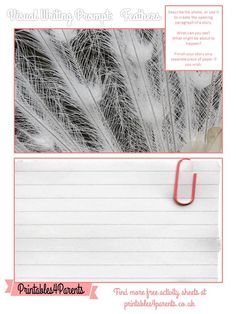 Here's a free printable Feathers writing prompt sheet for your children, featuring original Printables4Parents photography.