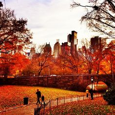 Enjoy walks in Central Park to soak in the fall colors!