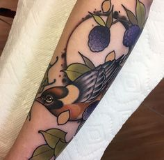 Bay Breasted Warbler & Blackberries done by Randy Burnham @ Bittersweet Tattoo Manchester NH.