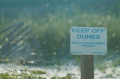 Nashville Family Photographer, Cape San Blas Photography, Keep off Dunes