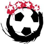 Ball,Meister,Gewinner,Mannschaft,Master,Team,Fußball,Vier,Mannschaftssport,Sterne,Fan