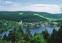 Titisee, Swartzwald, Germany... I drove my professor and a friend around the lake on a boat that went like 2 knots! It was beautiful.