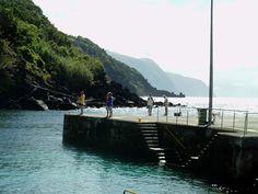 PORTO DA CALHETA: Pesca Lúdica (3)