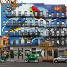 Street Art Project Uses Building Facades to Spread the Word About 314 Endangered Bird Species - My Modern Met