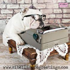 #Bulldoggie