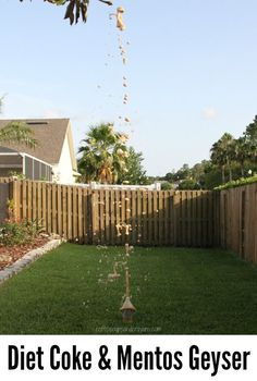 Diet Coke and Mentos Geyser Science Experiment for Kids