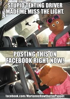 Texting and Driving Meme Comedy https://www.facebook.com/MarianneHawthornePuppet…