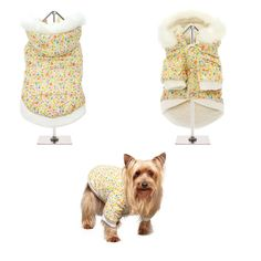 Dog Jacket, Rain Jacket, Dog Raincoat, Waterproof Coat, Teacup Chihuahua, Dog Hoodie, Leather Collar, Dog Coats, Classic Collection