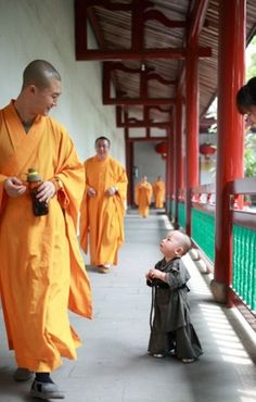 Shaolin life The Little Monk
