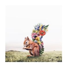 Dreamlike Images That Will Inspire Your Surrealist Soul by Artist Luisa Azevedo Surrealism Photography, Animal Photography, Creative Photography, Photography Ideas, Portrait Photography, Inspiration Art, Art Inspo, Culture Art, Nature Animals