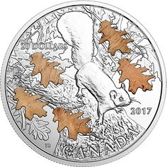 Buy Now: http://goccf.com/rcm/itm/prod2811300  RCM New Release: 2017 1 oz. Pure Silver Coin – The Nutty Squirrel and the Mighty Oak - Coin Community Forum