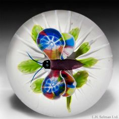 Baccarat (antique)  Antique Baccarat butterfly over clematis paperweight.