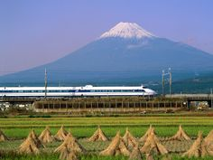 Mt. Fuji, Bullet Train, Harvest 富士山、新幹線、収穫