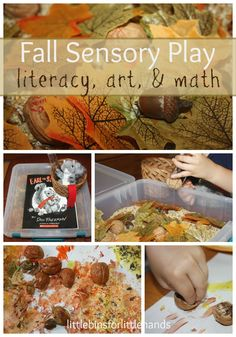 Books & Bins Sensory Play Series: Fall with Earl the Squirrel